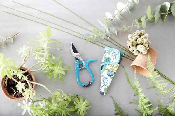 secateurs with holster
